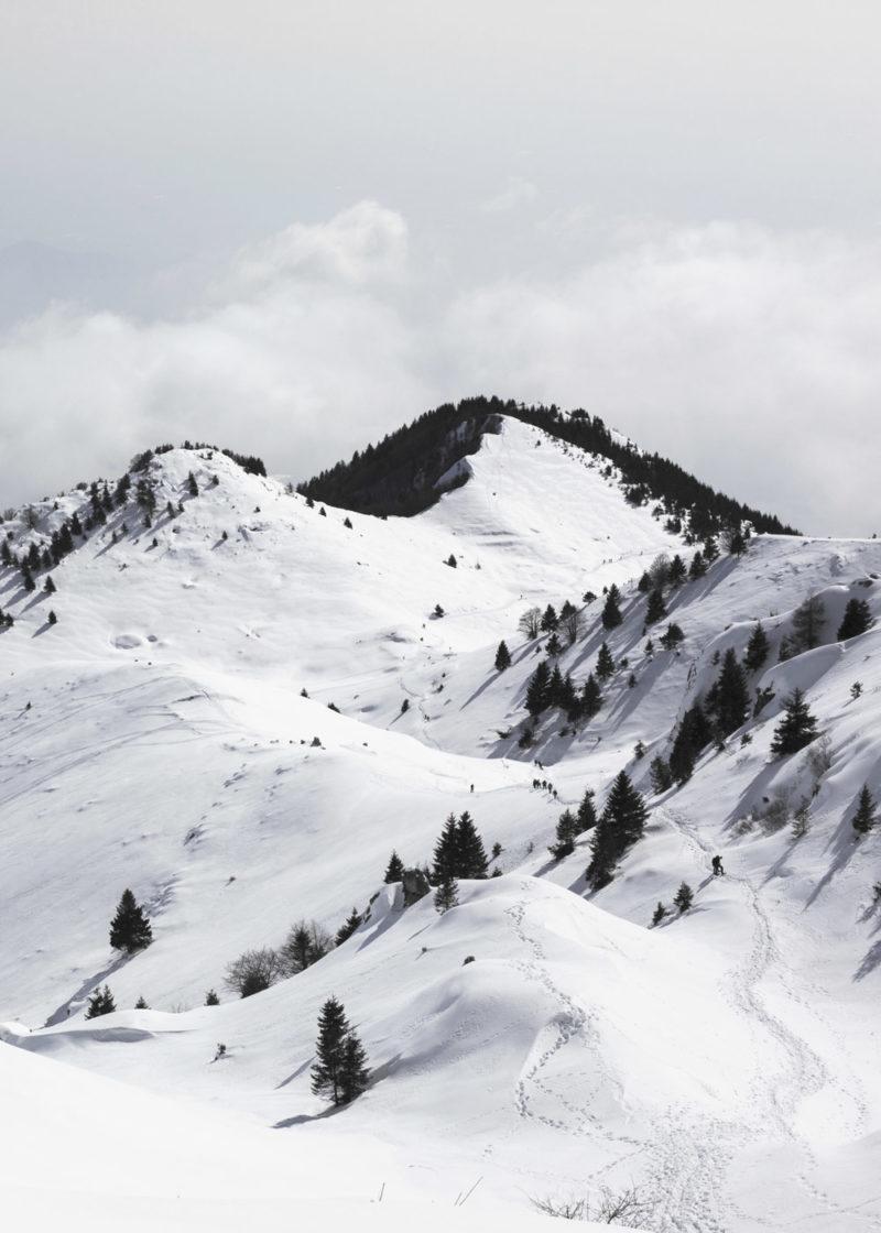 soft-fresh-snow